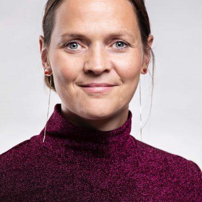 Sofie Plenge, Kulturdirektør Vejle Kommune